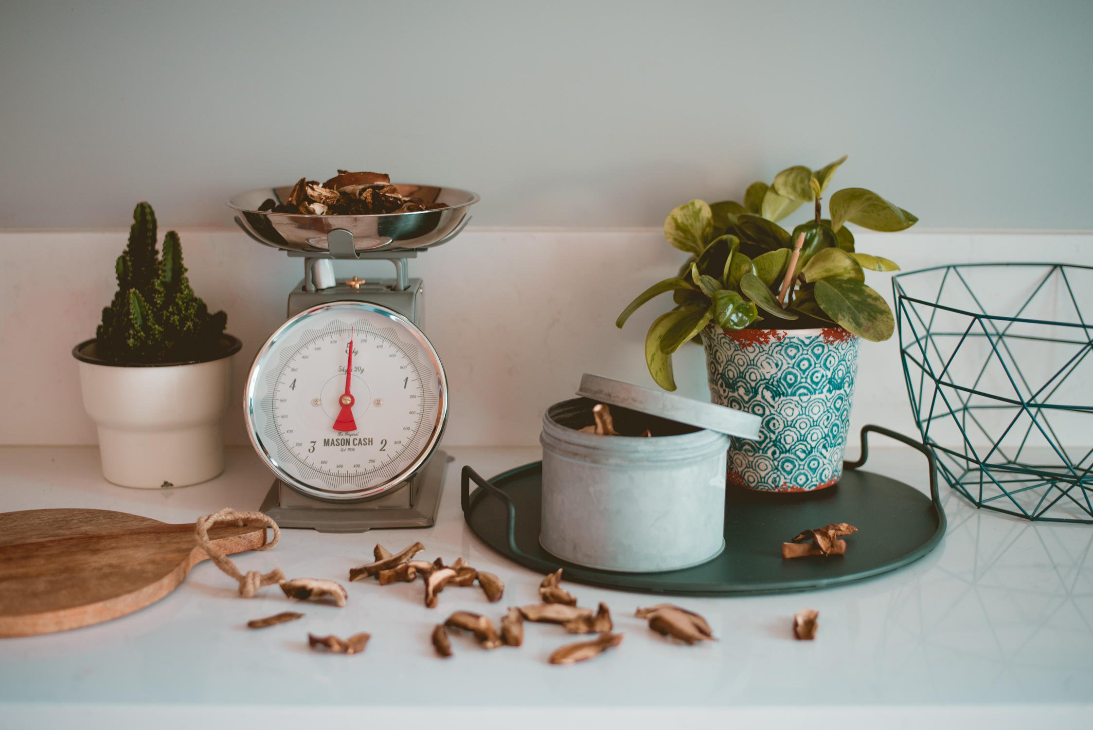 Jak suszyć grzyby w domu oraz jak je przechowywać i wykorzystać?